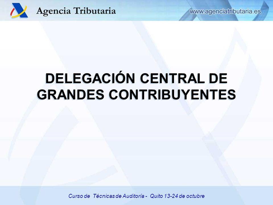 Curso de Técnicas de Auditoría – Quito 11-24 de octubre de 2008 Curso de Técnicas de Auditoría - Quito 13-24 de octubre DELEGACIÓN CENTRAL DE GRANDES CONTRIBUYENTES