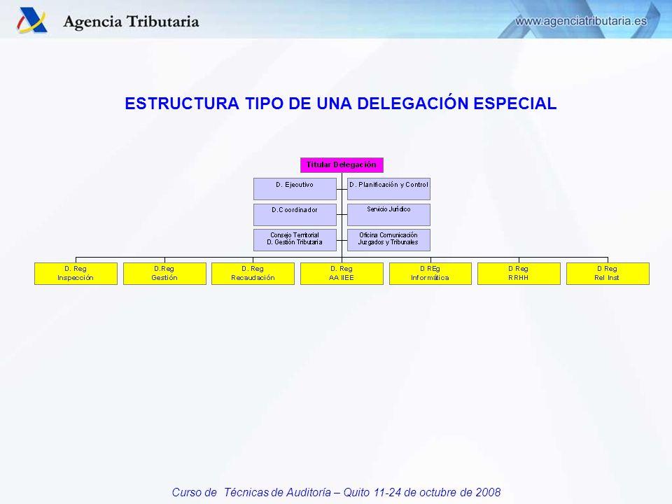 Curso de Técnicas de Auditoría – Quito 11-24 de octubre de 2008 ESTRUCTURA TIPO DE UNA DELEGACIÓN ESPECIAL
