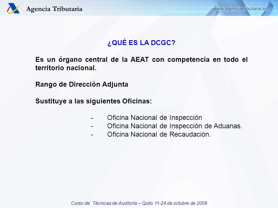 Curso de Técnicas de Auditoría – Quito 11-24 de octubre de 2008 ¿QUÉ ES LA DCGC.