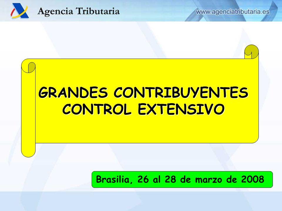 GASPAR CABALLO MINGO (DCGC) – BRASILIA 26-28/03/2008 GRANDES CONTRIBUYENTES CONTROL EXTENSIVO Brasilia, 26 al 28 de marzo de 2008