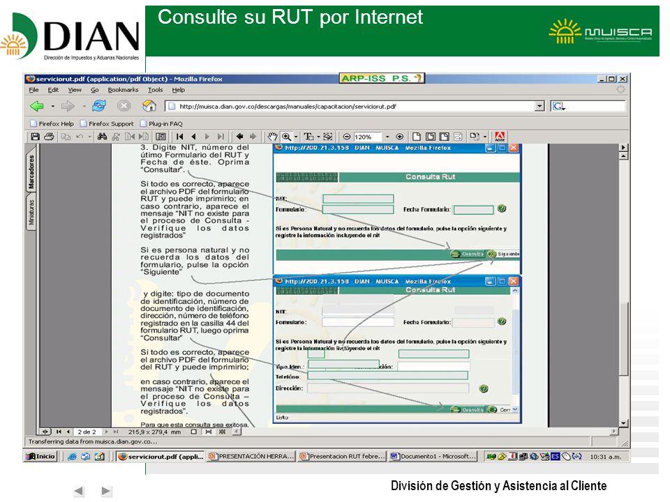 División de Gestión y Asistencia al Cliente Consulte su RUT por Internet