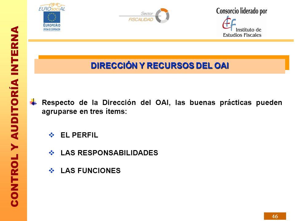 CONTROL Y AUDITORÍA INTERNA 46 Respecto de la Dirección del OAI, las buenas prácticas pueden agruparse en tres ítems: EL PERFIL LAS RESPONSABILIDADES