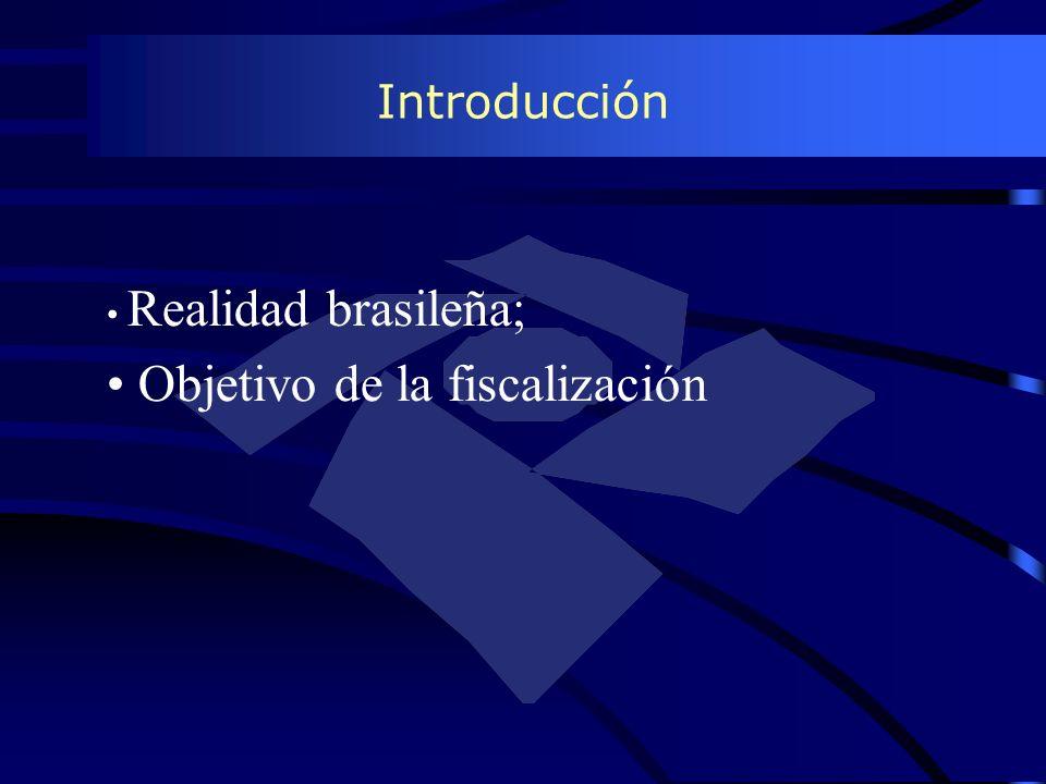 Introducción Realidad brasileña; Objetivo de la fiscalización