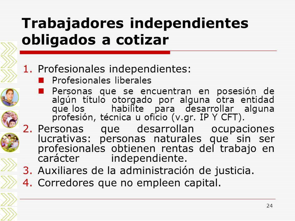 24 1.Profesionales independientes: Profesionales liberales Personas que se encuentran en posesión de algún título otorgado por alguna otra entidad que
