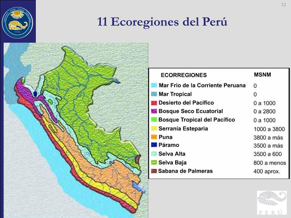 Contraloría General de la República 11 Ecoregiones del Perú 12