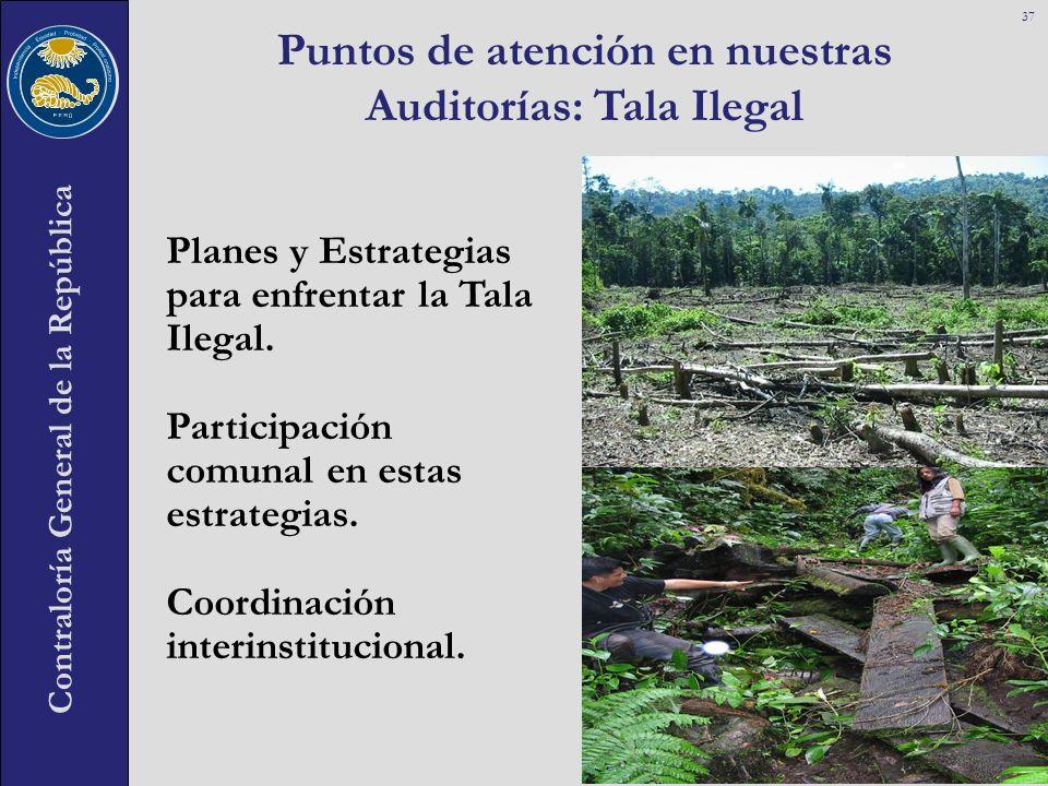 Contraloría General de la República Puntos de atención en nuestras Auditorías: Tala Ilegal 37 Planes y Estrategias para enfrentar la Tala Ilegal. Part
