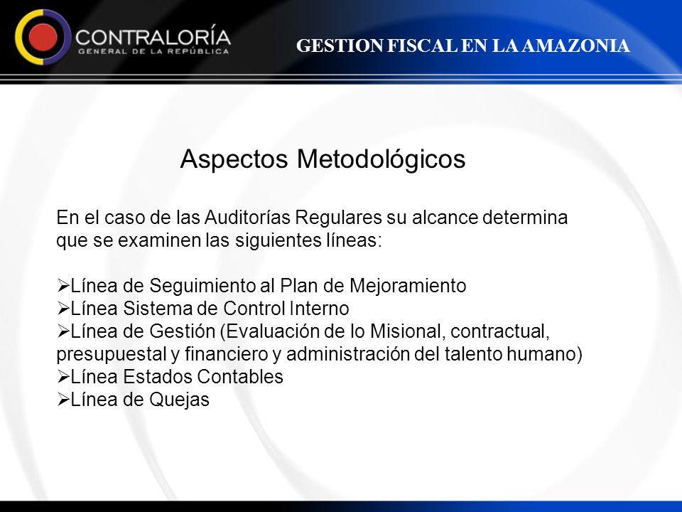 Aspectos Metodológicos En el caso de las Auditorías Regulares su alcance determina que se examinen las siguientes líneas: Línea de Seguimiento al Plan