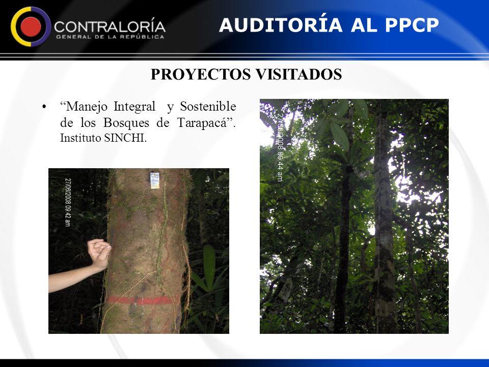 Manejo Integral y Sostenible de los Bosques de Tarapacá. Instituto SINCHI. PROYECTOS VISITADOS