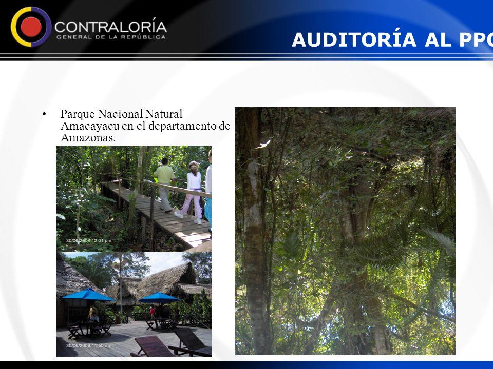 AUDITORÍA AL PPCP Parque Nacional Natural Amacayacu en el departamento de Amazonas.