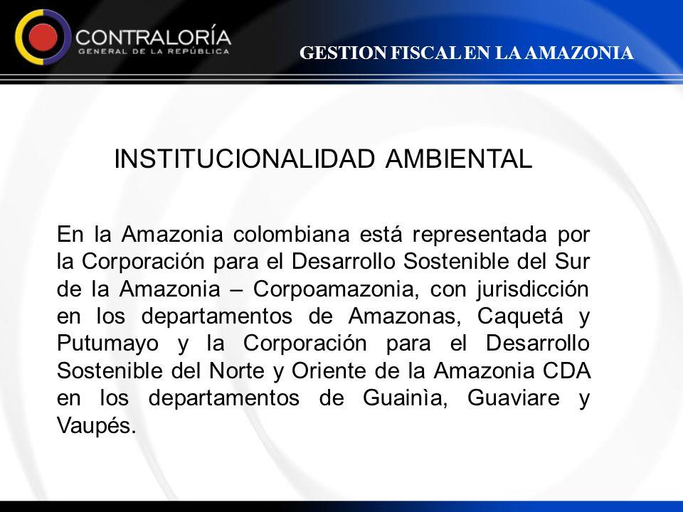 INSTITUCIONALIDAD AMBIENTAL En la Amazonia colombiana está representada por la Corporación para el Desarrollo Sostenible del Sur de la Amazonia – Corp