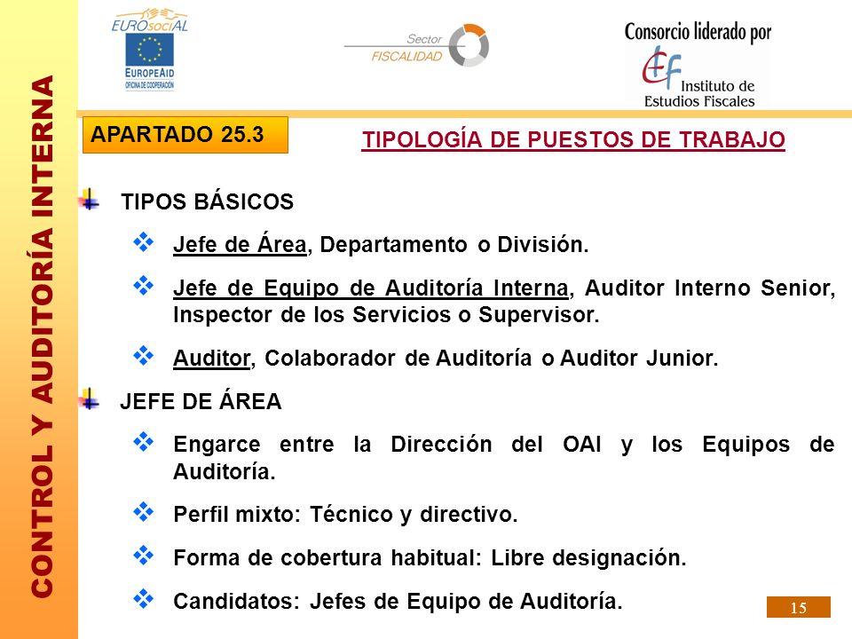 CONTROL Y AUDITORÍA INTERNA 15 TIPOS BÁSICOS Jefe de Área, Departamento o División. Jefe de Equipo de Auditoría Interna, Auditor Interno Senior, Inspe