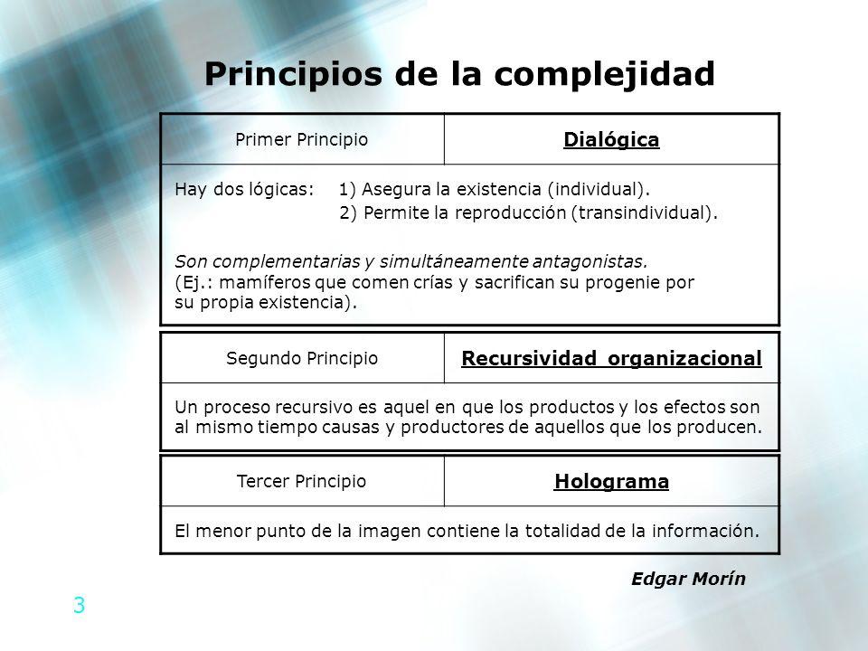 3 Principios de la complejidad Segundo Principio Recursividad organizacional Un proceso recursivo es aquel en que los productos y los efectos son al m