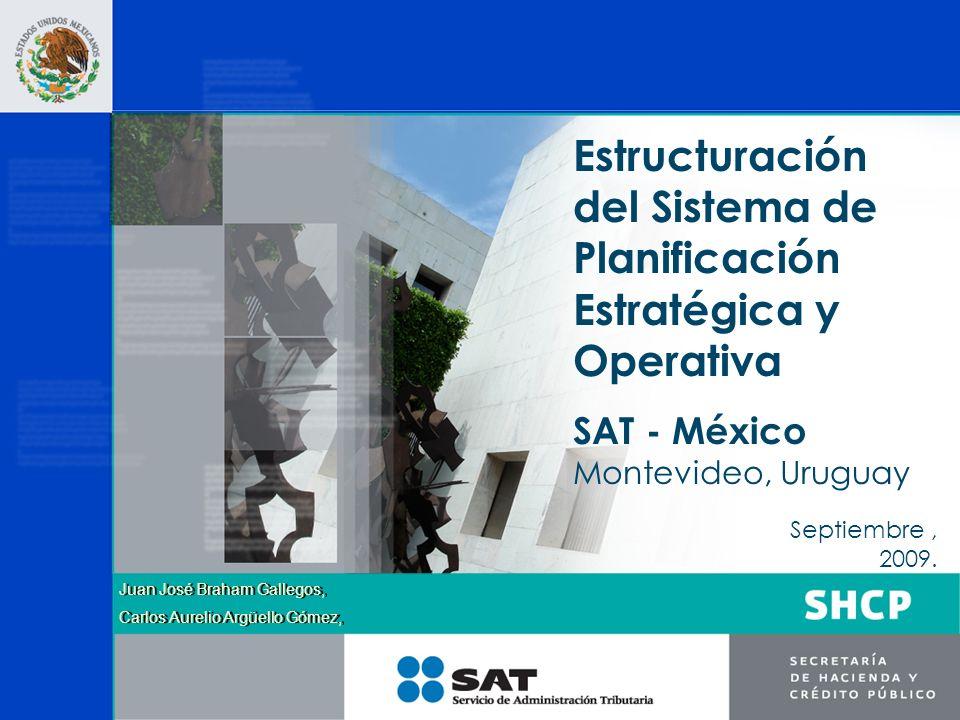 Contenido 1.Misión y visión del SAT.2.Estructura organizacional del SAT.
