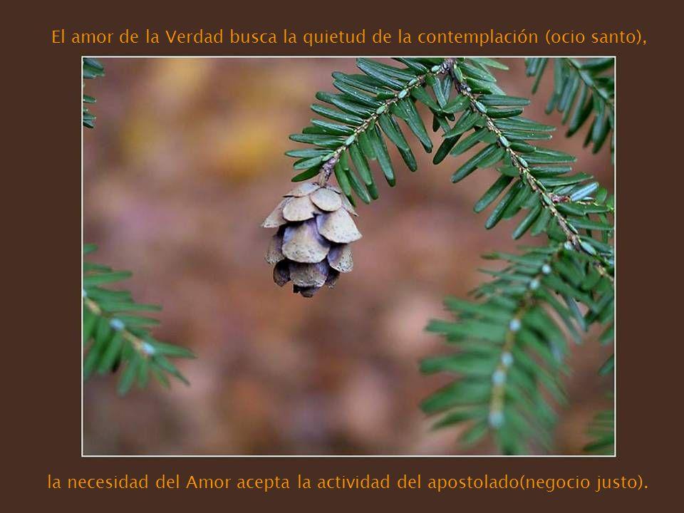 El amor de la Verdad busca la quietud de la contemplación (ocio santo), la necesidad del Amor acepta la actividad del apostolado(negocio justo).