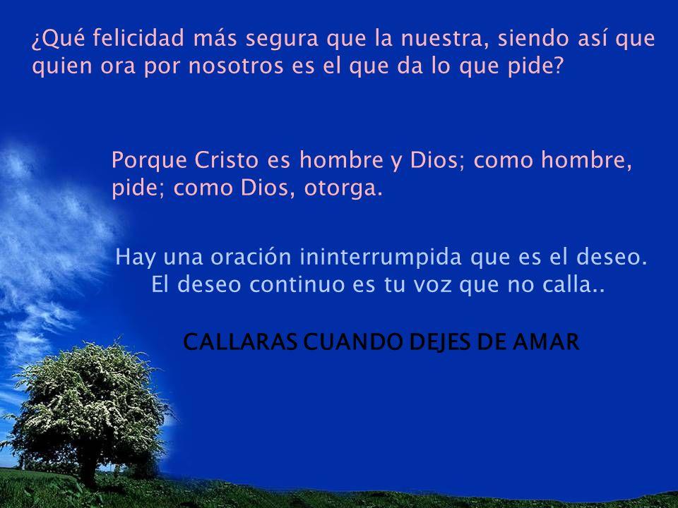 ¿Qué felicidad más segura que la nuestra, siendo así que quien ora por nosotros es el que da lo que pide? Porque Cristo es hombre y Dios; como hombre,