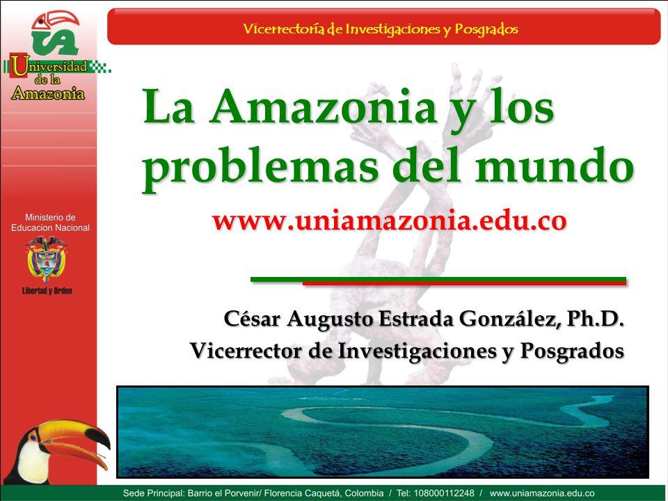 Vicerrectoría de Investigaciones y Posgrados La Amazonia y los problemas del mundo www.uniamazonia.edu.co César Augusto Estrada González, Ph.D. Vicerr
