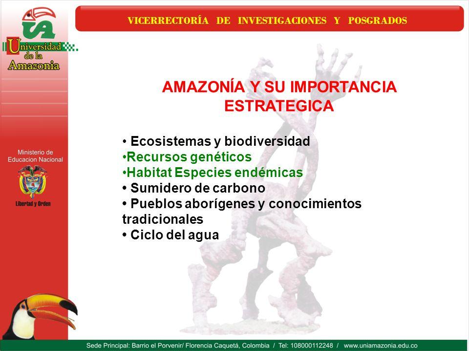 VICERRECTORÍA DE INVESTIGACIONES Y POSGRADOS AMAZONÍA Y SU IMPORTANCIA ESTRATEGICA Ecosistemas y biodiversidad Recursos genéticos Habitat Especies end