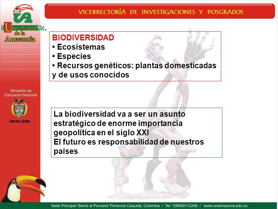 VICERRECTORÍA DE INVESTIGACIONES Y POSGRADOS BIODIVERSIDAD Ecosistemas Especies Recursos genéticos: plantas domesticadas y de usos conocidos La biodiv