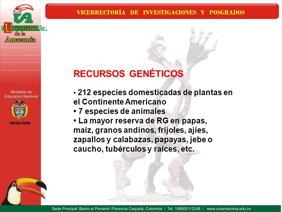 VICERRECTORÍA DE INVESTIGACIONES Y POSGRADOS RECURSOS GENÉTICOS 212 especies domesticadas de plantas en el Continente Americano 7 especies de animales