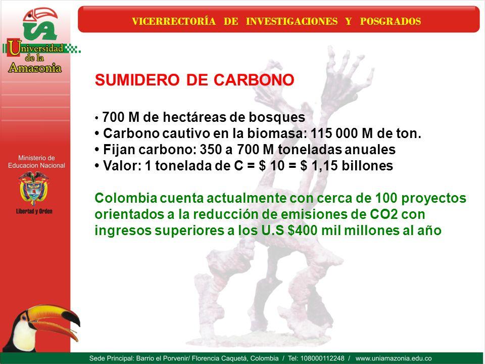 VICERRECTORÍA DE INVESTIGACIONES Y POSGRADOS SUMIDERO DE CARBONO 700 M de hectáreas de bosques Carbono cautivo en la biomasa: 115 000 M de ton. Fijan