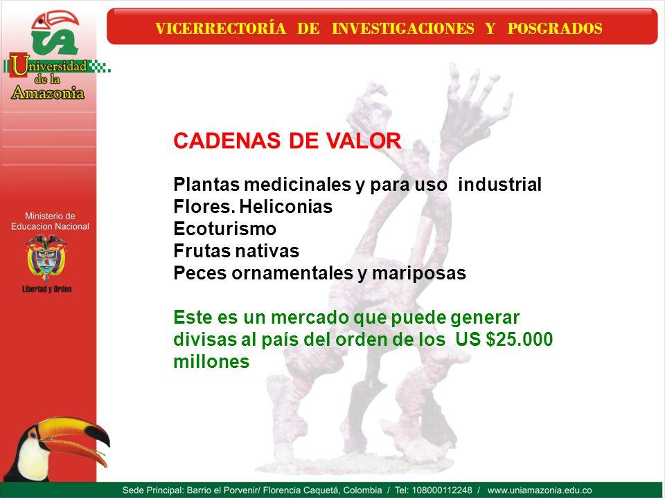 VICERRECTORÍA DE INVESTIGACIONES Y POSGRADOS CADENAS DE VALOR Plantas medicinales y para uso industrial Flores. Heliconias Ecoturismo Frutas nativas P