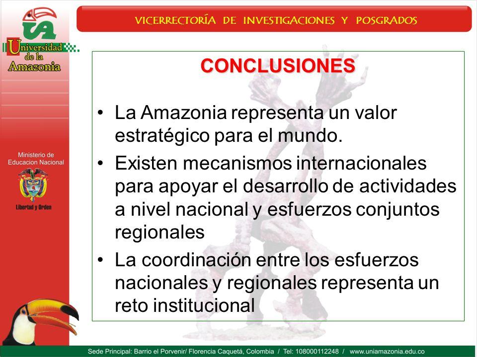 CONCLUSIONES La Amazonia representa un valor estratégico para el mundo. Existen mecanismos internacionales para apoyar el desarrollo de actividades a