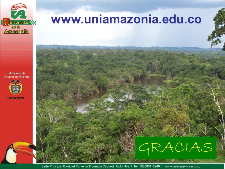 GRACIAS www.uniamazonia.edu.co