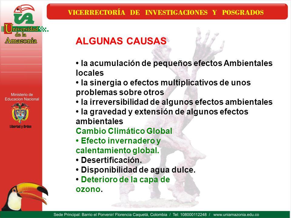 VICERRECTORÍA DE INVESTIGACIONES Y POSGRADOS ALGUNAS CAUSAS la acumulación de pequeños efectos Ambientales locales la sinergia o efectos multiplicativ