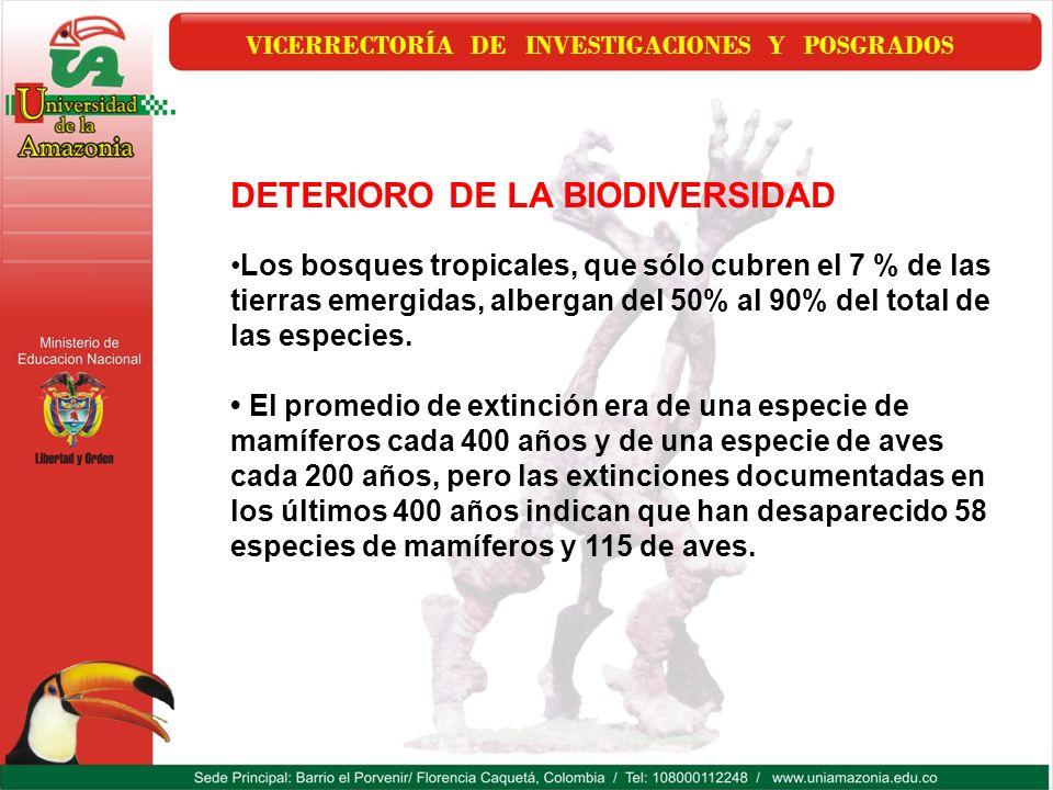VICERRECTORÍA DE INVESTIGACIONES Y POSGRADOS DETERIORO DE LA BIODIVERSIDAD Los bosques tropicales, que sólo cubren el 7 % de las tierras emergidas, al