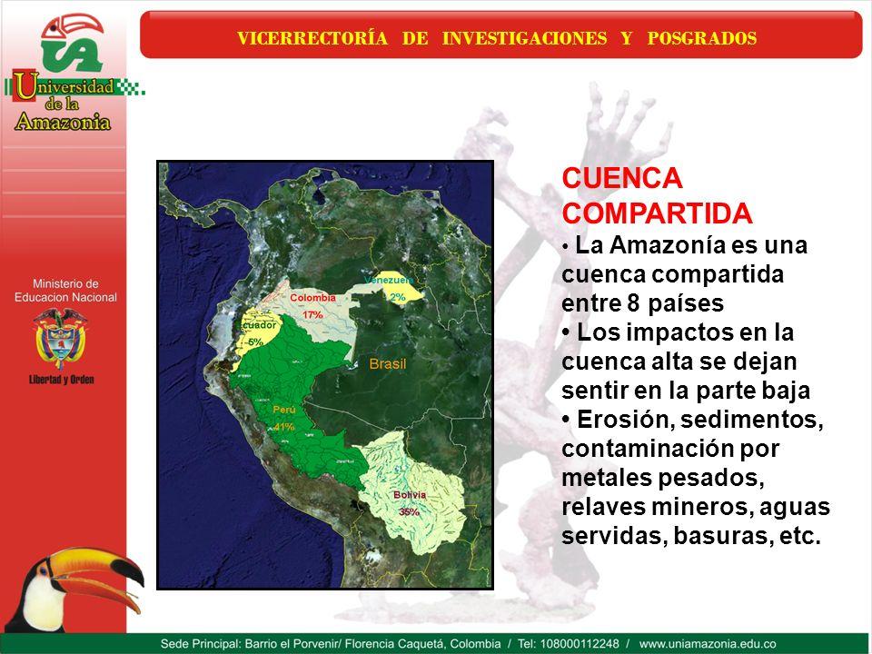 VICERRECTORÍA DE INVESTIGACIONES Y POSGRADOS CUENCA COMPARTIDA La Amazonía es una cuenca compartida entre 8 países Los impactos en la cuenca alta se d