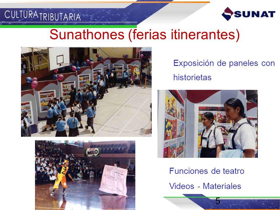 5 Sunathones (ferias itinerantes) Exposición de paneles con historietas Funciones de teatro Videos - Materiales