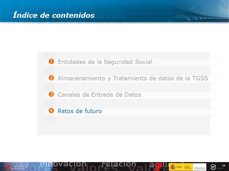24 Índice de contenidos Entidades de la Seguridad Social Almacenamiento y Tratamiento de datos de la TGSS Canales de Entrada de Datos Retos de futuro
