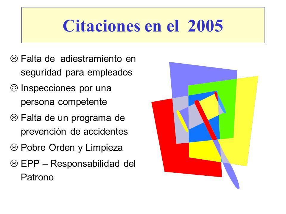 Citaciones en el 2005 Falta de adiestramiento en seguridad para empleados Inspecciones por una persona competente Falta de un programa de prevención d