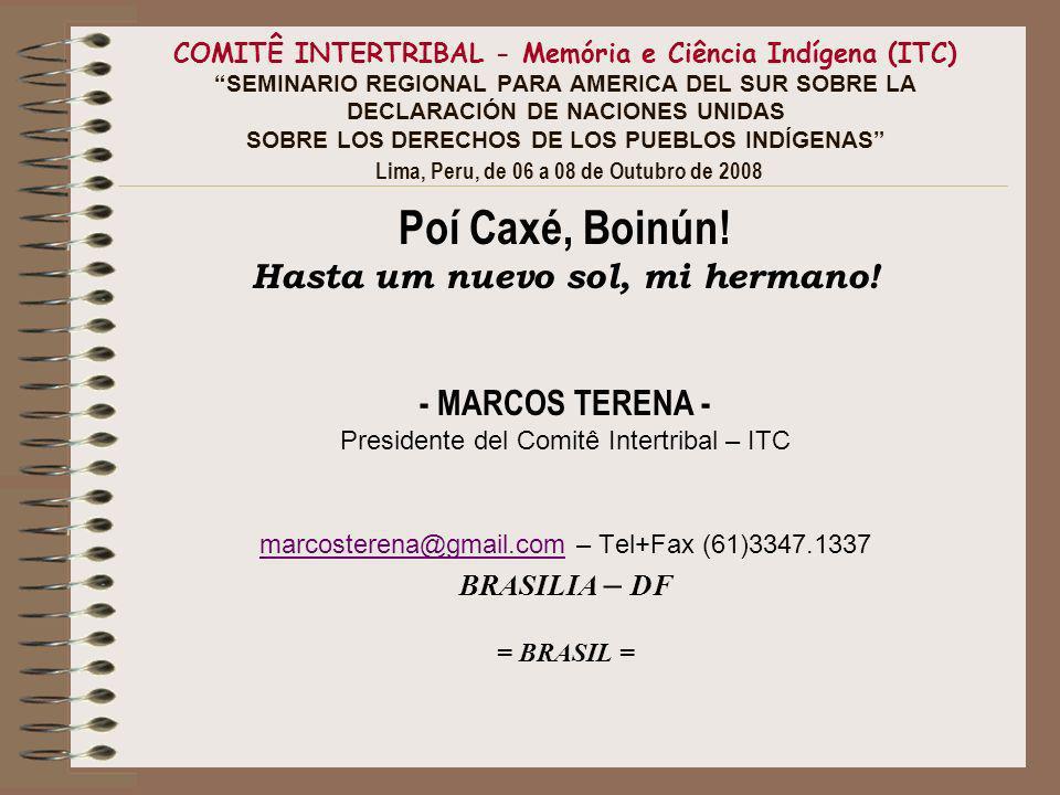 COMITÊ INTERTRIBAL - Memória e Ciência Indígena (ITC) SEMINARIO REGIONAL PARA AMERICA DEL SUR SOBRE LA DECLARACIÓN DE NACIONES UNIDAS SOBRE LOS DERECHOS DE LOS PUEBLOS INDÍGENAS Lima, Peru, de 06 a 08 de Outubro de 2008 Poí Caxé, Boinún.