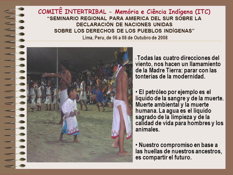COMITÊ INTERTRIBAL - Memória e Ciência Indígena (ITC) SEMINARIO REGIONAL PARA AMERICA DEL SUR SOBRE LA DECLARACIÓN DE NACIONES UNIDAS SOBRE LOS DERECHOS DE LOS PUEBLOS INDÍGENAS Lima, Peru, de 06 a 08 de Outubro de 2008 De donde.