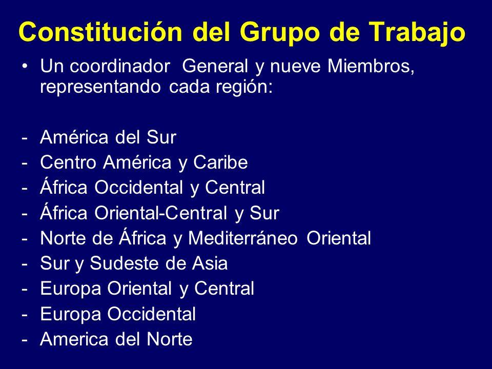 Constitución del Grupo de Trabajo Un coordinador General y nueve Miembros, representando cada región: -América del Sur -Centro América y Caribe -Áfric
