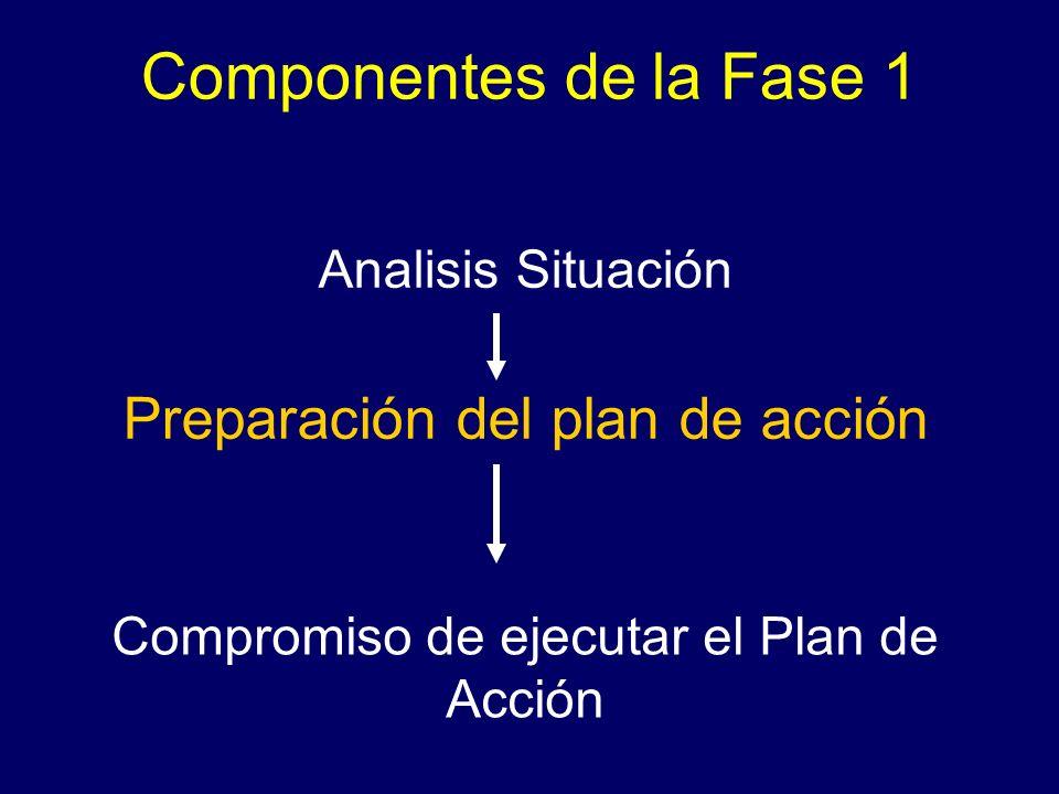 Componentes de la Fase 1 Analisis Situación Preparación del plan de acción Compromiso de ejecutar el Plan de Acción