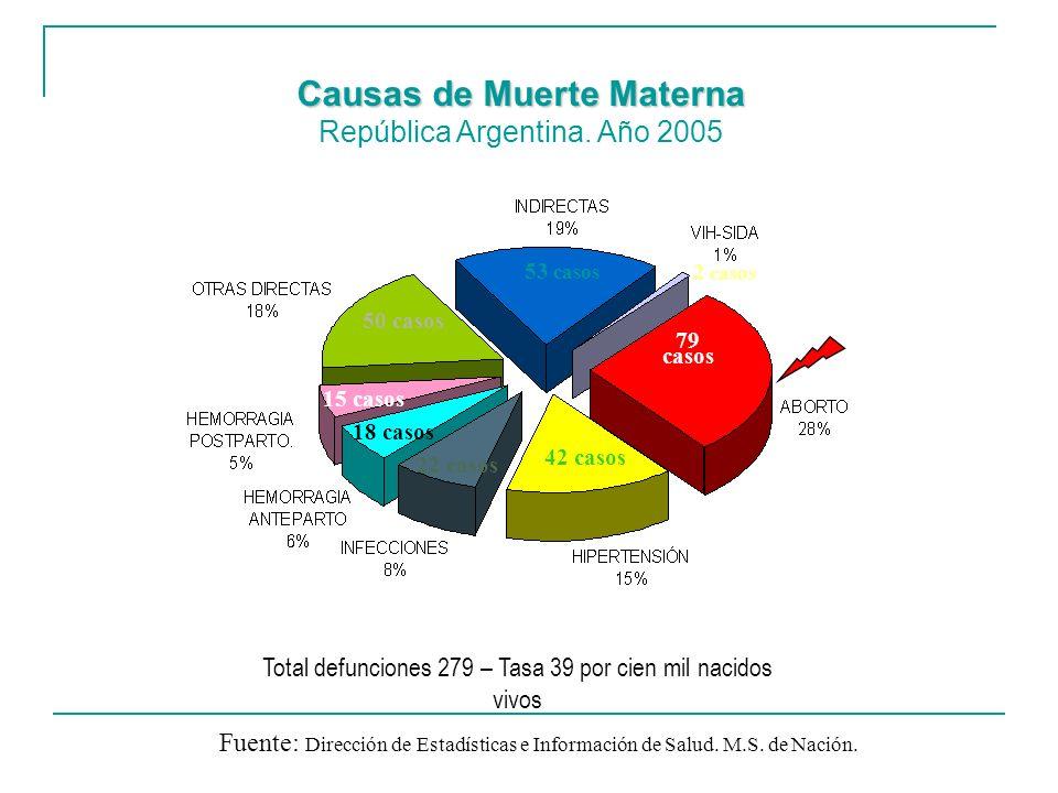 Causas de Muerte Materna Causas de Muerte Materna República Argentina. Año 2005 Fuente: Dirección de Estadísticas e Información de Salud. M.S. de Naci