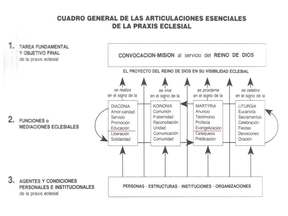 Diálogo interdisciplinar (DGC 73)