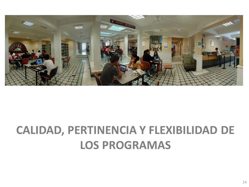 Visita Pares Académicos. 10, 11 y 12 de junio de 2009. El egresado para la universidad… CALIDAD, PERTINENCIA Y FLEXIBILIDAD DE LOS PROGRAMAS 14