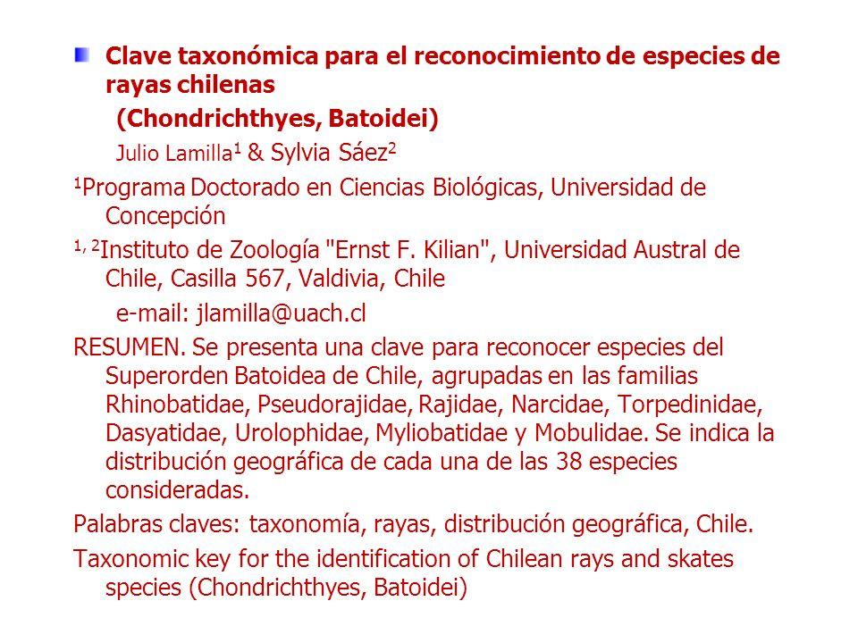 Clave taxonómica para el reconocimiento de especies de rayas chilenas (Chondrichthyes, Batoidei) Julio Lamilla 1 & Sylvia Sáez 2 1 Programa Doctorado