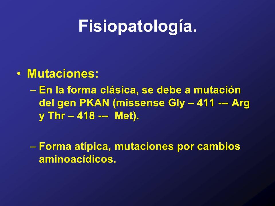 Fisiopatología. Mutaciones: –En la forma clásica, se debe a mutación del gen PKAN (missense Gly – 411 --- Arg y Thr – 418 --- Met). –Forma atípica, mu