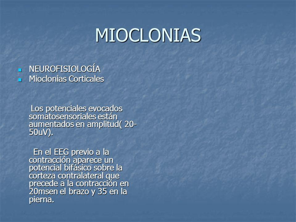 MIOCLONIAS NEUROFISIOLOGÍA NEUROFISIOLOGÍA Mioclonias Corticales Mioclonias Corticales Los potenciales evocados somatosensoriales están aumentados en