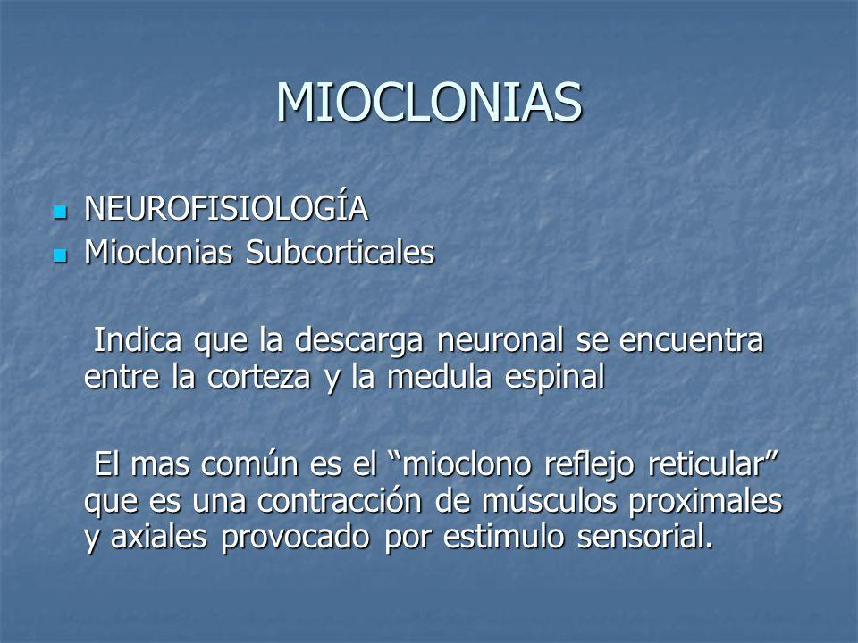 MIOCLONIAS NEUROFISIOLOGÍA NEUROFISIOLOGÍA Mioclonias Subcorticales Mioclonias Subcorticales Indica que la descarga neuronal se encuentra entre la cor