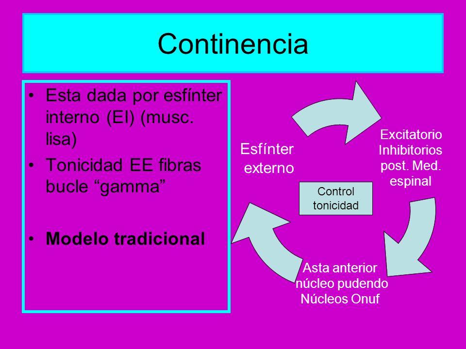 Continencia Esta dada por esfínter interno (EI) (musc. lisa) Tonicidad EE fibras bucle gamma Modelo tradicional Excitatorio Inhibitorios post. Med. es