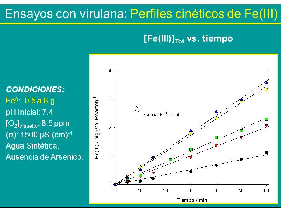 Ensayos con virulana: Perfiles cinéticos de Fe(III) [Fe(III)] Tot vs. tiempo CONDICIONES: Fe 0 : 0.5 a 6 g pH Inicial: 7.4 [O 2 ] disuelto : 8.5 ppm (