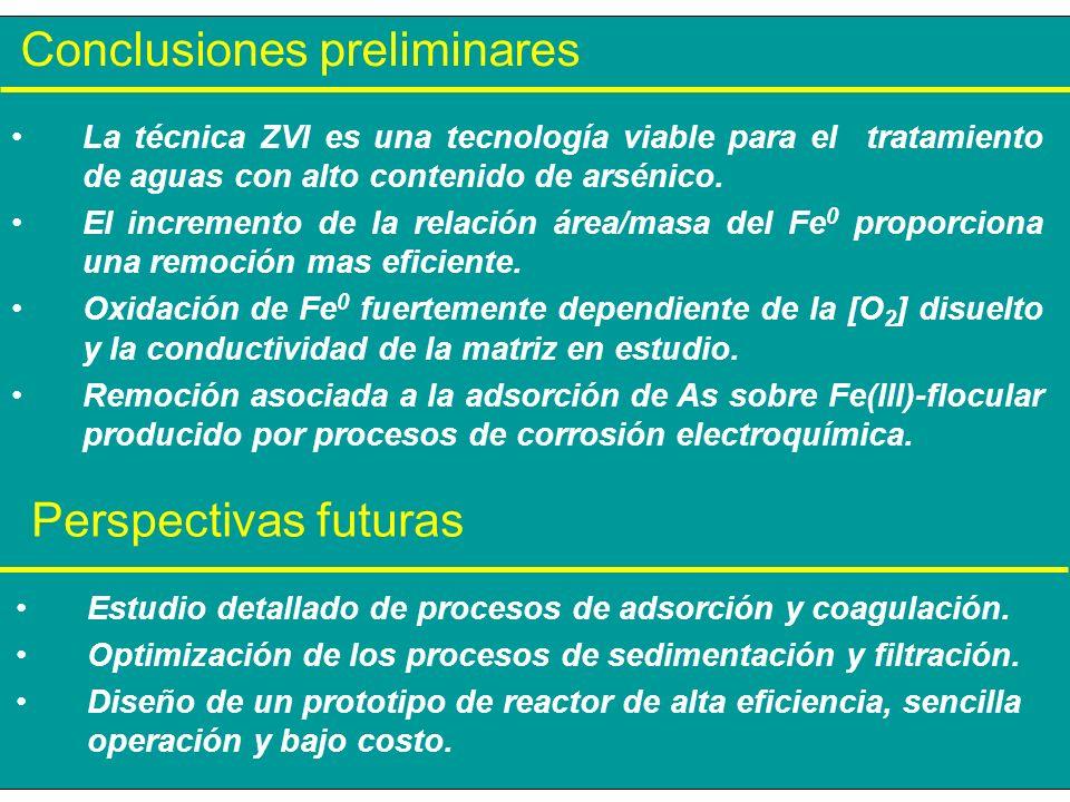 Conclusiones preliminares Perspectivas futuras Estudio detallado de procesos de adsorción y coagulación. Optimización de los procesos de sedimentación