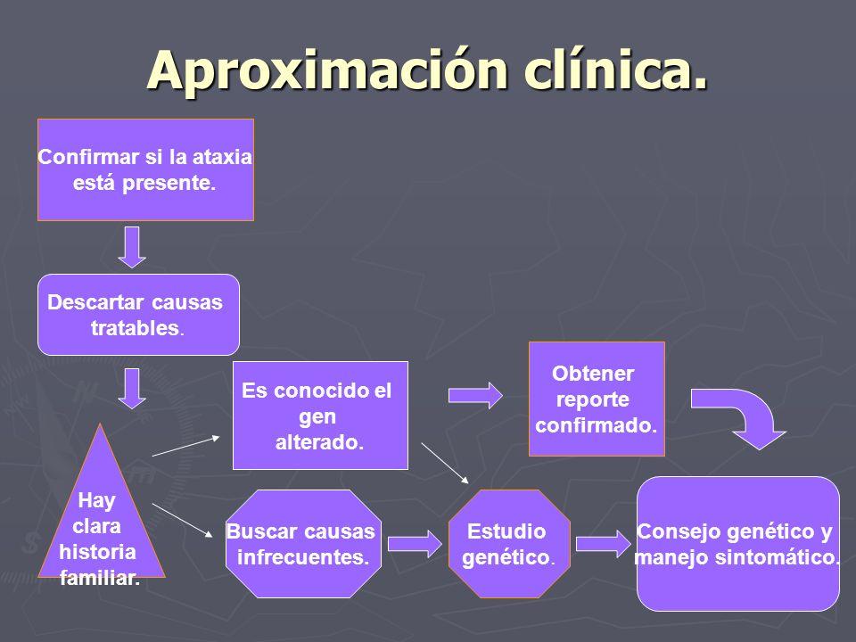 Aproximación clínica. Confirmar si la ataxia está presente. Descartar causas tratables. Hay clara historia familiar. Buscar causas infrecuentes. Es co