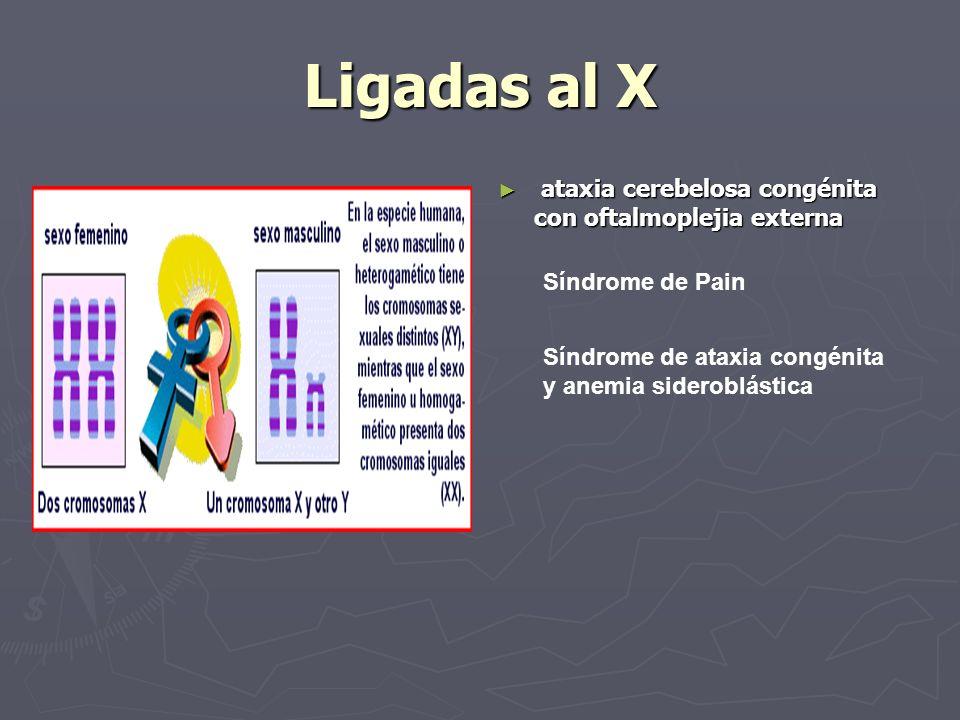 Ligadas al X ataxia cerebelosa congénita con oftalmoplejia externa Síndrome de Pain Síndrome de ataxia congénita y anemia sideroblástica