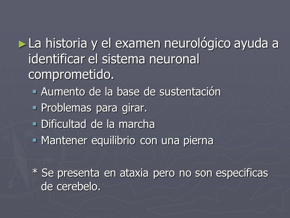 La historia y el examen neurológico ayuda a identificar el sistema neuronal comprometido. La historia y el examen neurológico ayuda a identificar el s